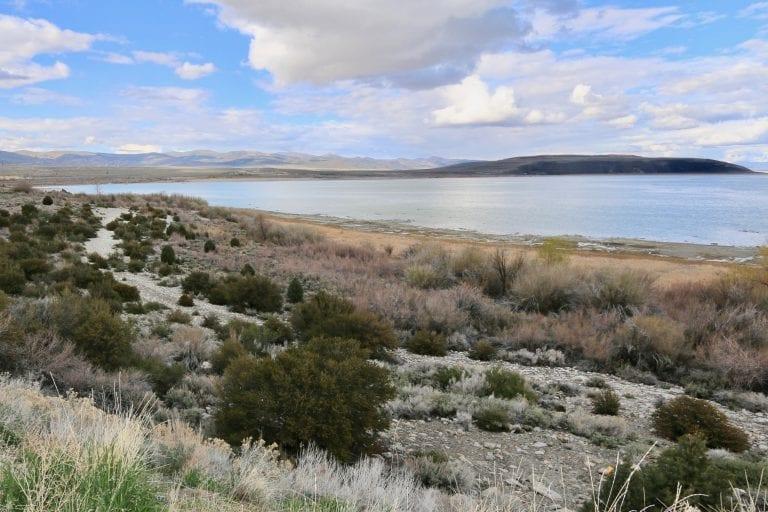 Broker's Report, Sept 7, 2018 — Eastern Sierra Environmentalists