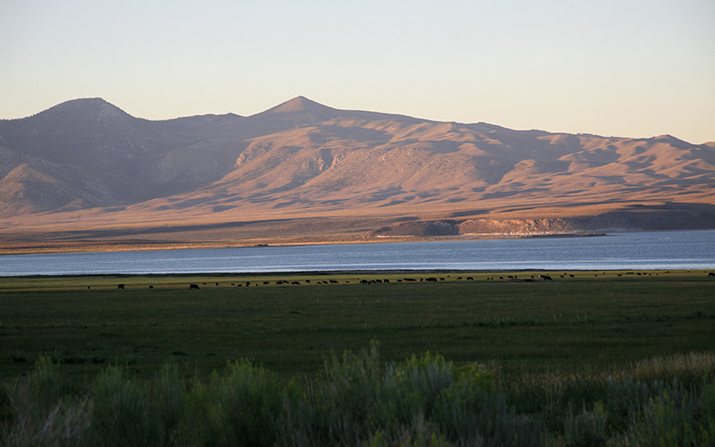 Crowley Lake, California